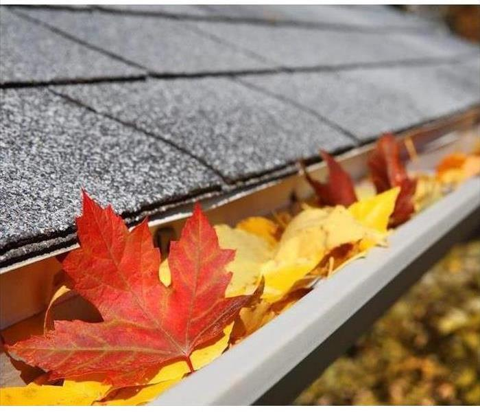 A roofline with orange and yellow leaves in the gutter