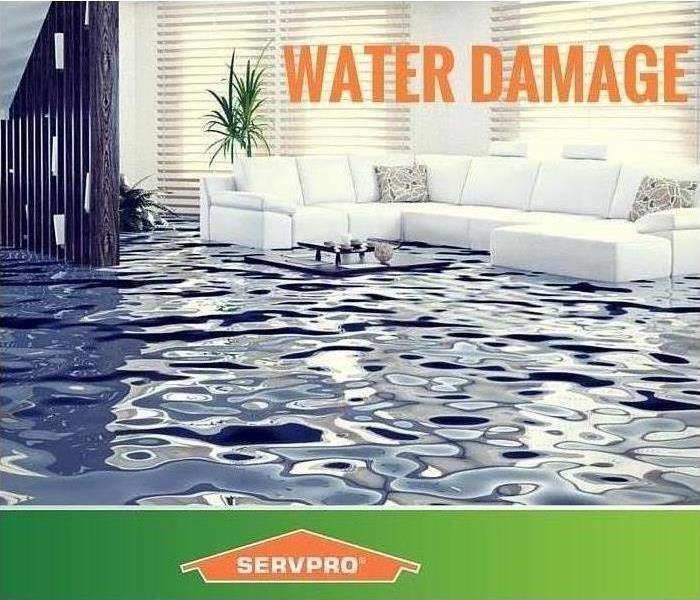 room full of water, white couch covered in water, large orange letter saying WATER DAMAGE, SERVPRO logo at the bottom